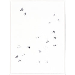 Mid Flight I Framed Print