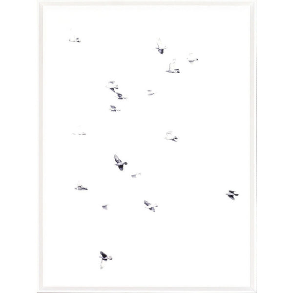 Mid Flight II Framed Print