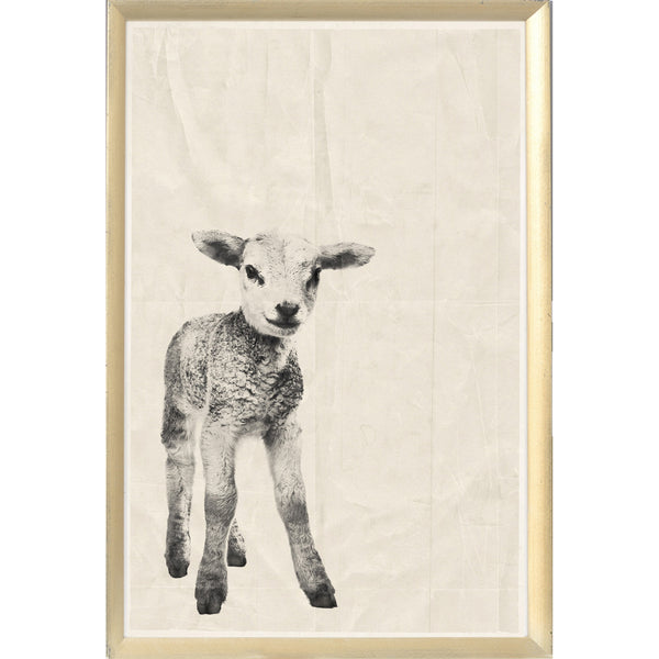 Black Ink Lamb Framed Print