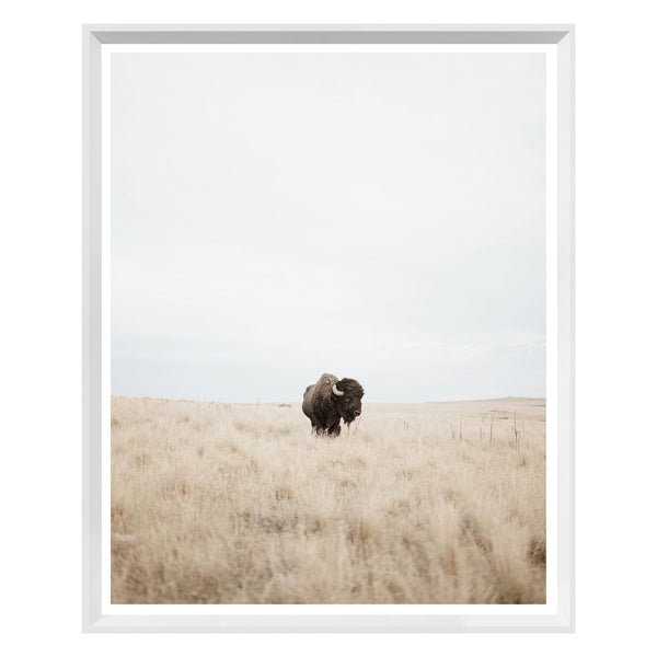 Great Plains White Framed Print