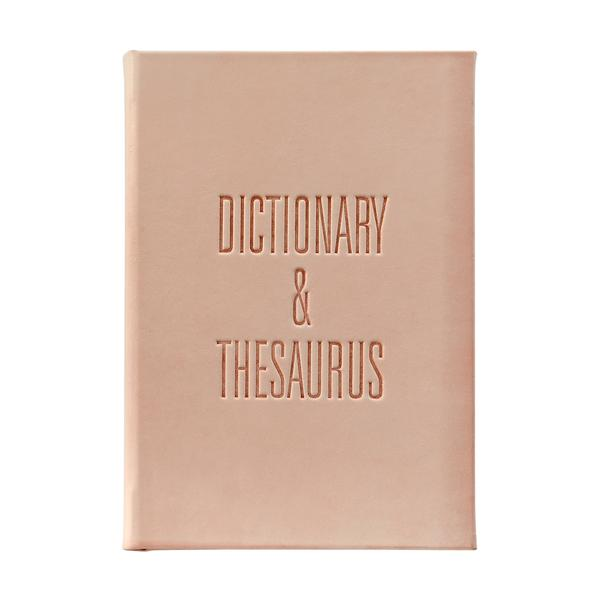 Dictionary & Thesaurus Book