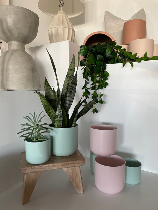 Sally Pink Planter