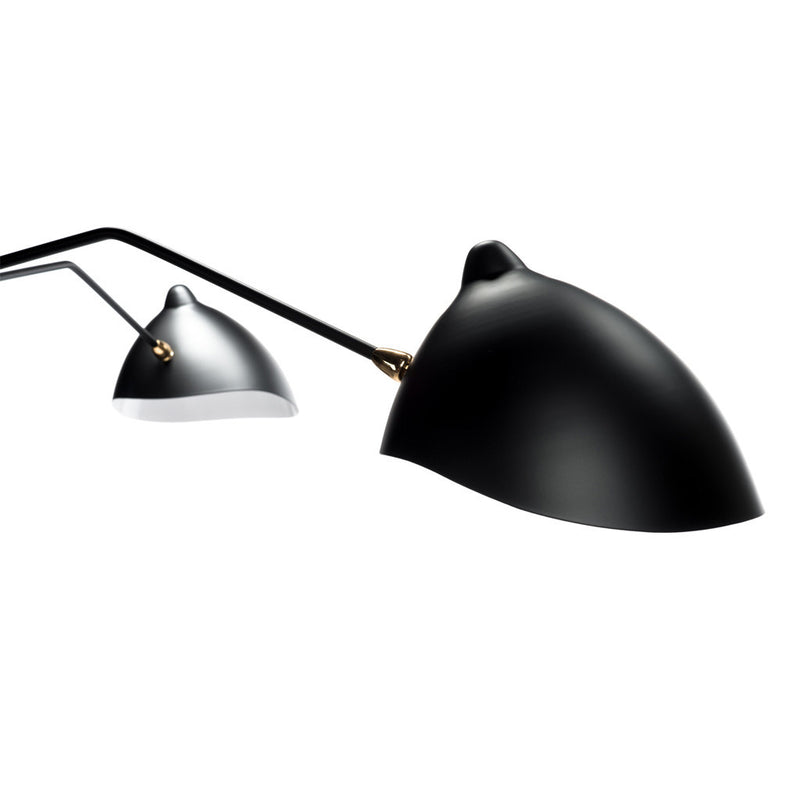 Fly Trap Black Ceiling Mount Lamp
