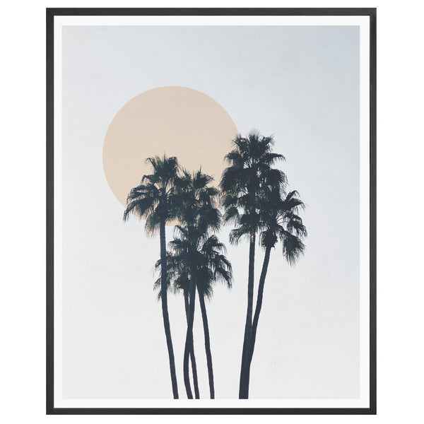 Tall Palms Framed Print