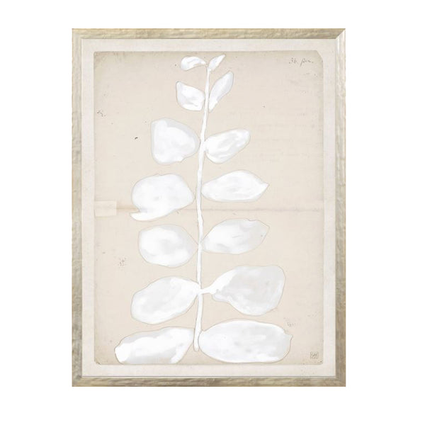 Neutral Nature I Framed Print