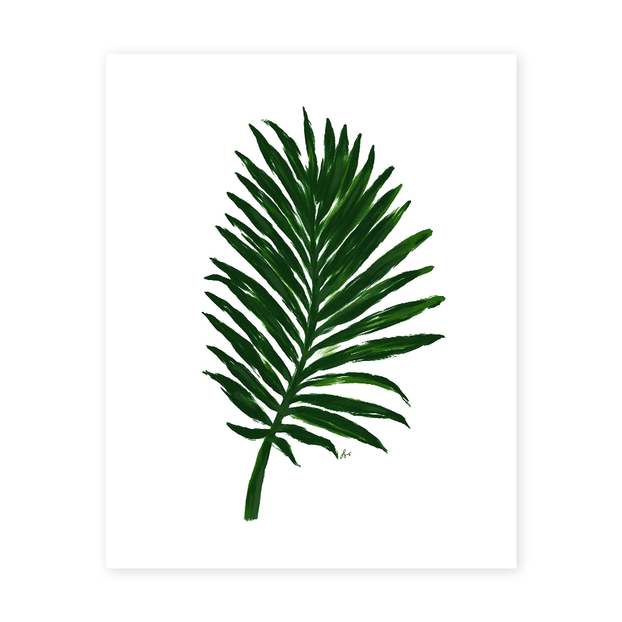 Palm Leaf Print 8 X 10 Ld Shoppe