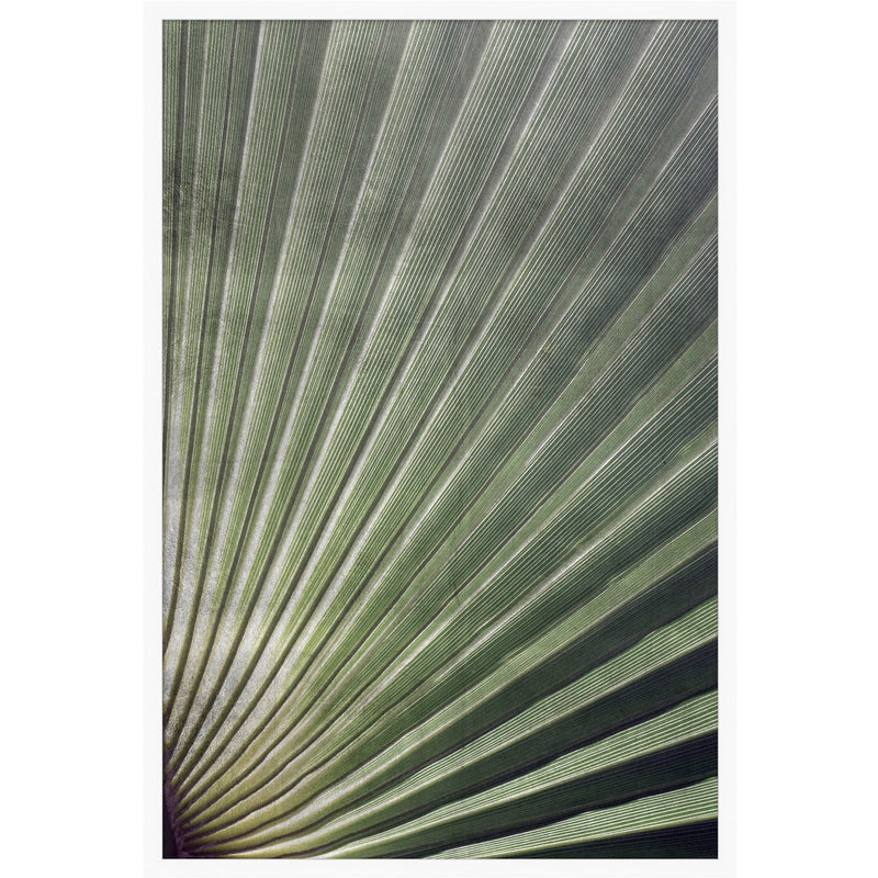 Palm Frond I Framed Print