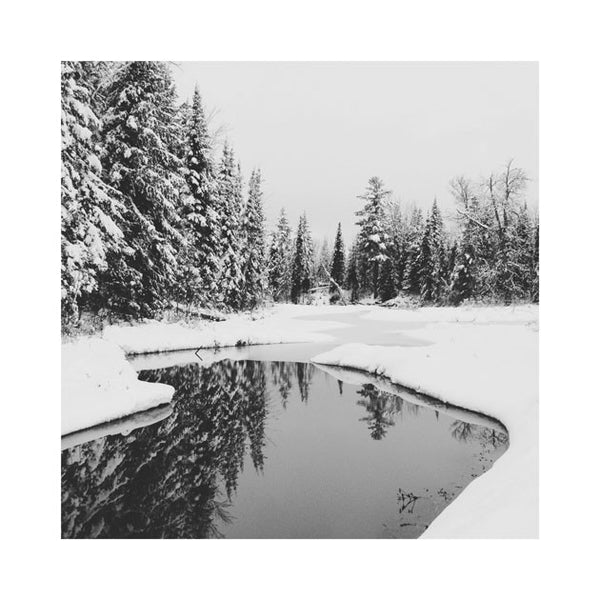 Winter Reflection Print