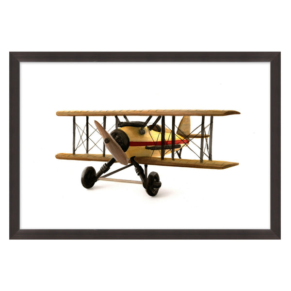 Bi-Flyer 1 Framed Print