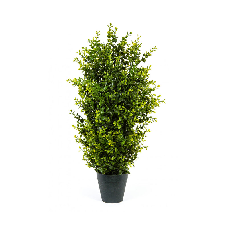 Faux 2' Boxwood Tree