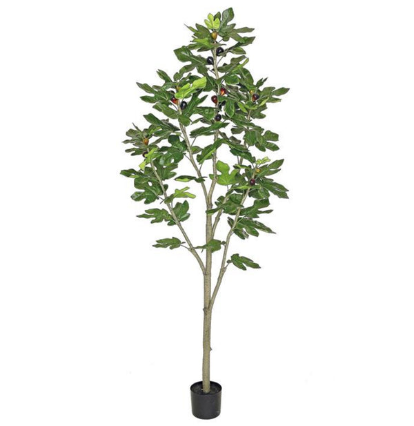 Faux Fruiting Fig Tree - 72""