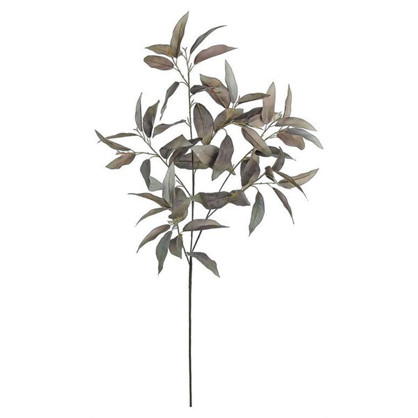 Grey Mountain Laurel Leaf Spray