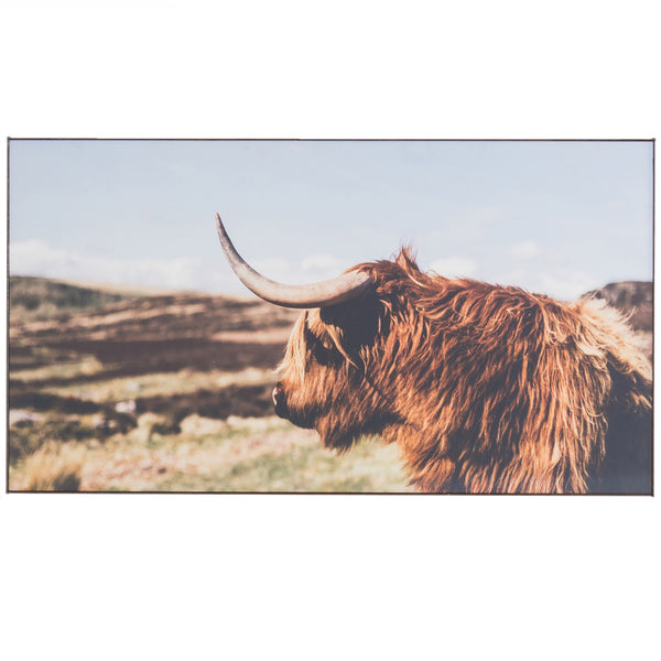 Highland Bull Framed Art