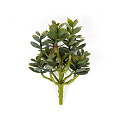 "9"" Faux Mini Money Green Plant"