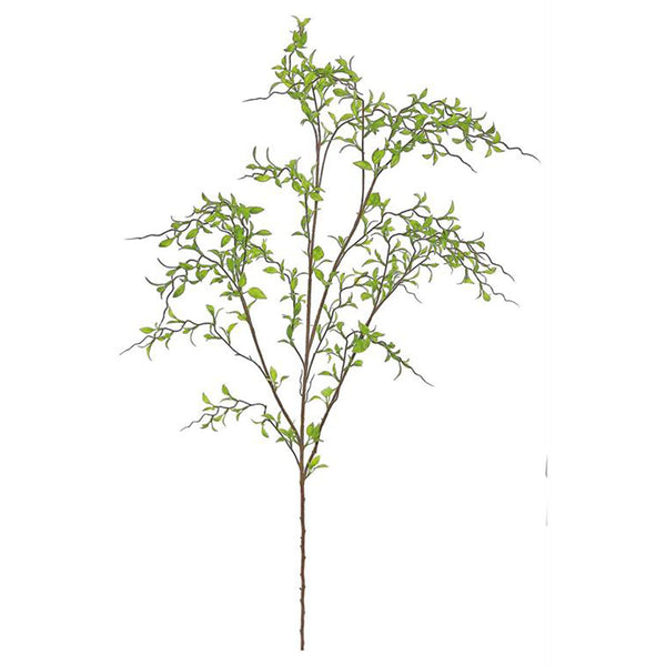 Mini Willow Leaf Branch