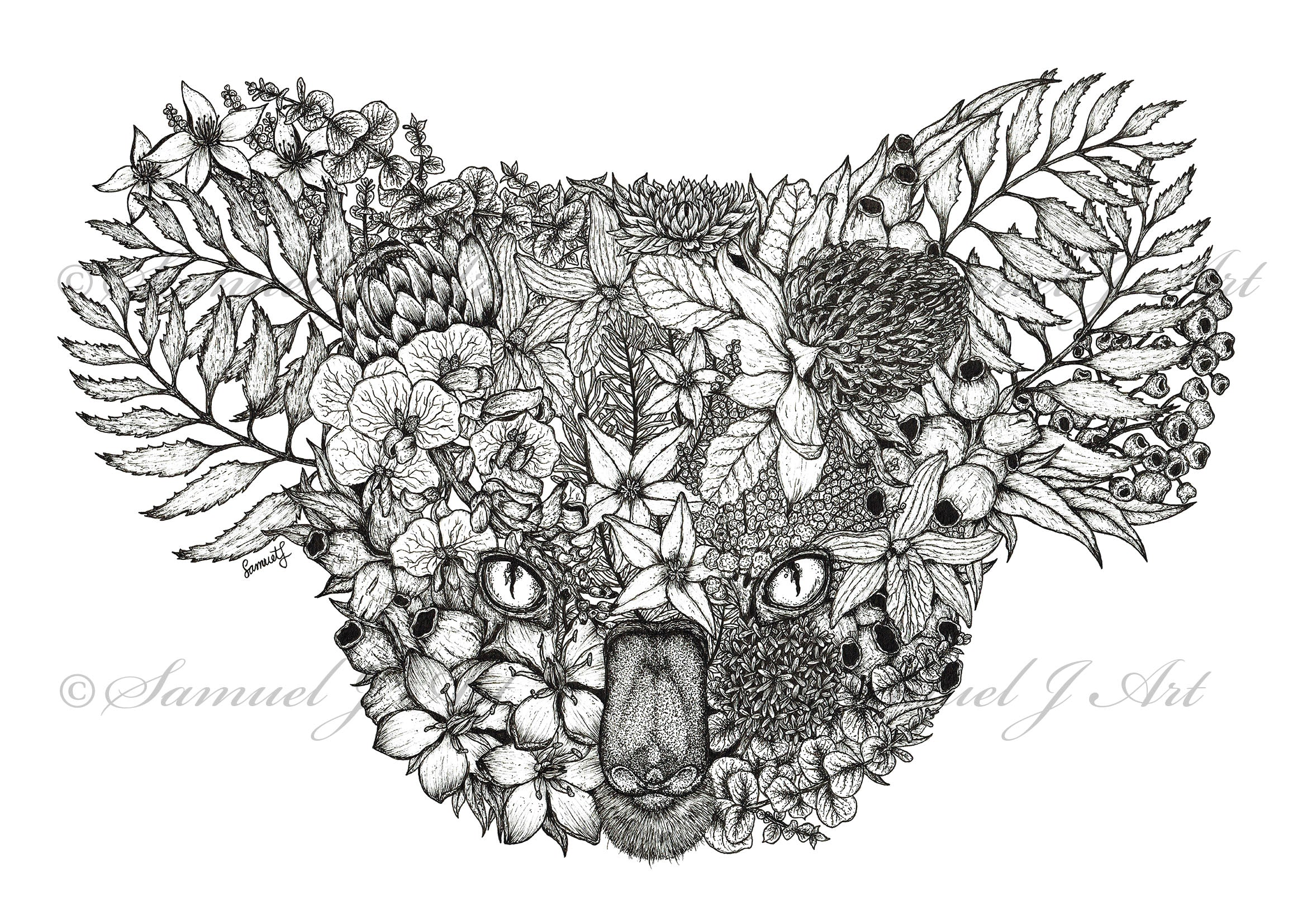 Floral Koala - White Background - Prints