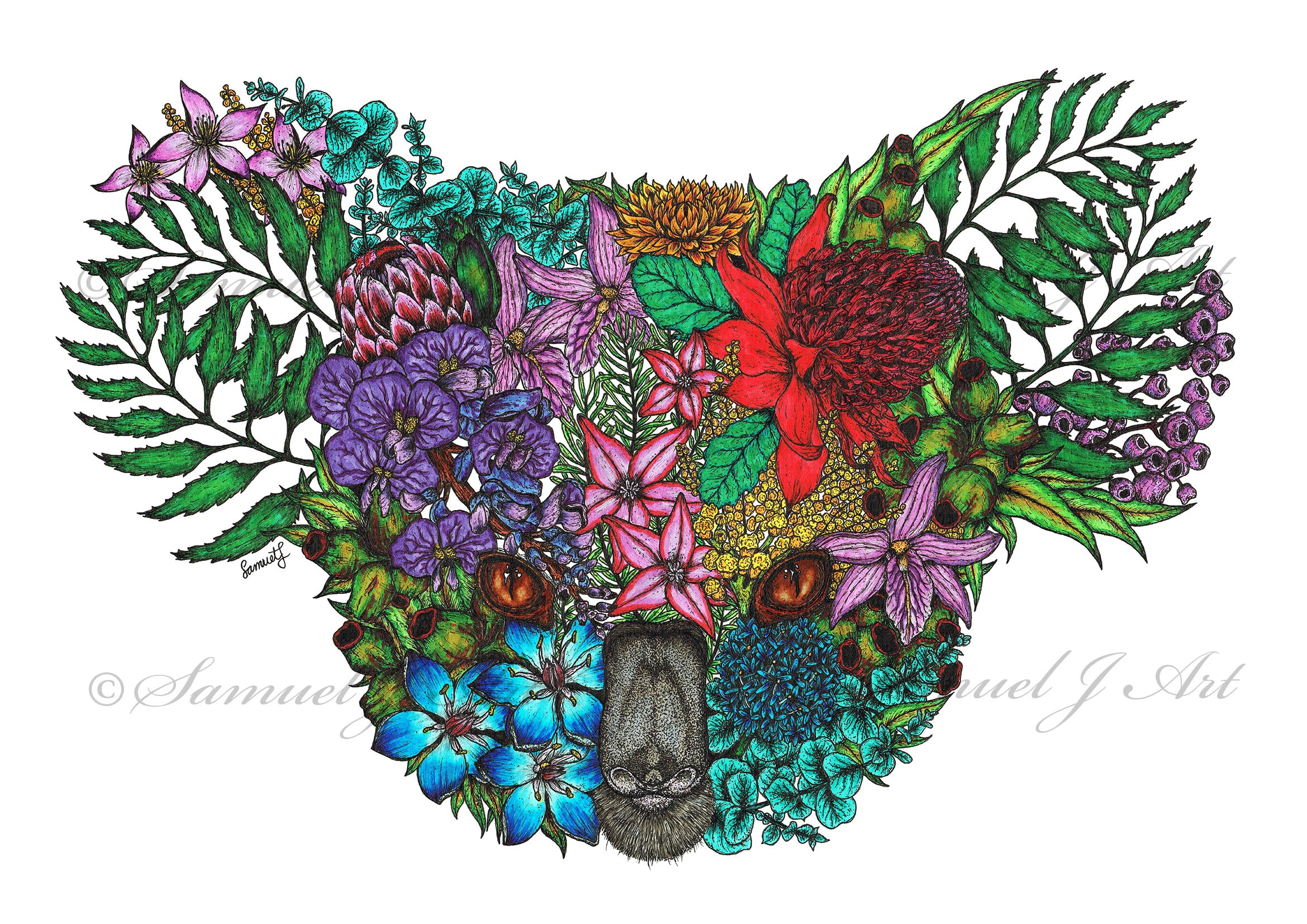 Colour Floral Koala - White Background - Prints