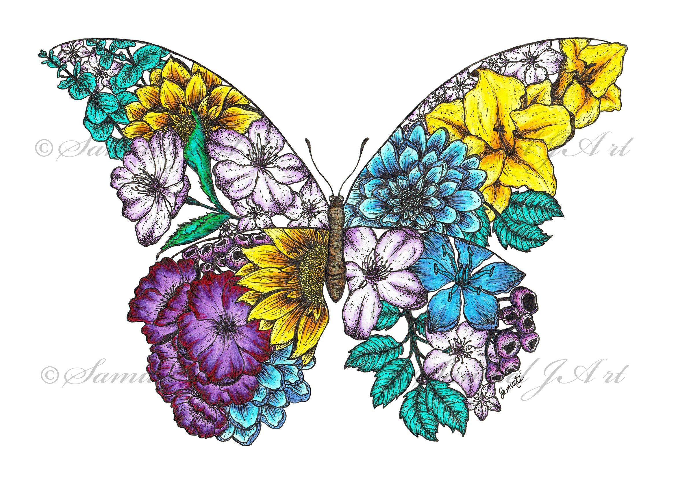 Floral Butterfly - Colour - White Background