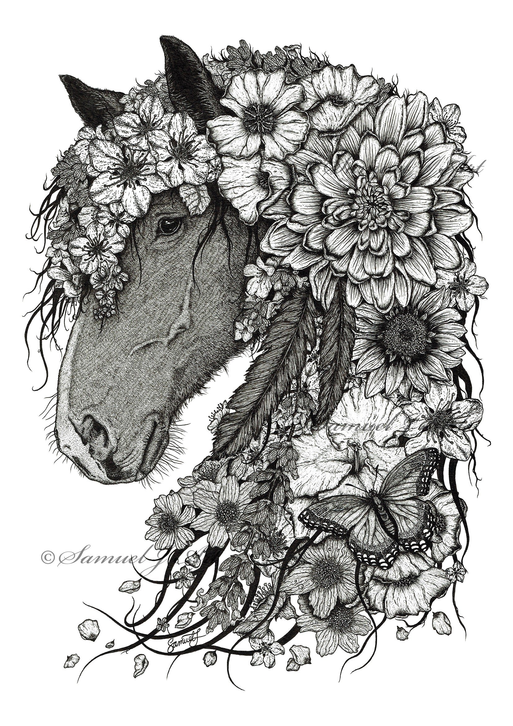 Floral Horse - B&W - White Background - Prints