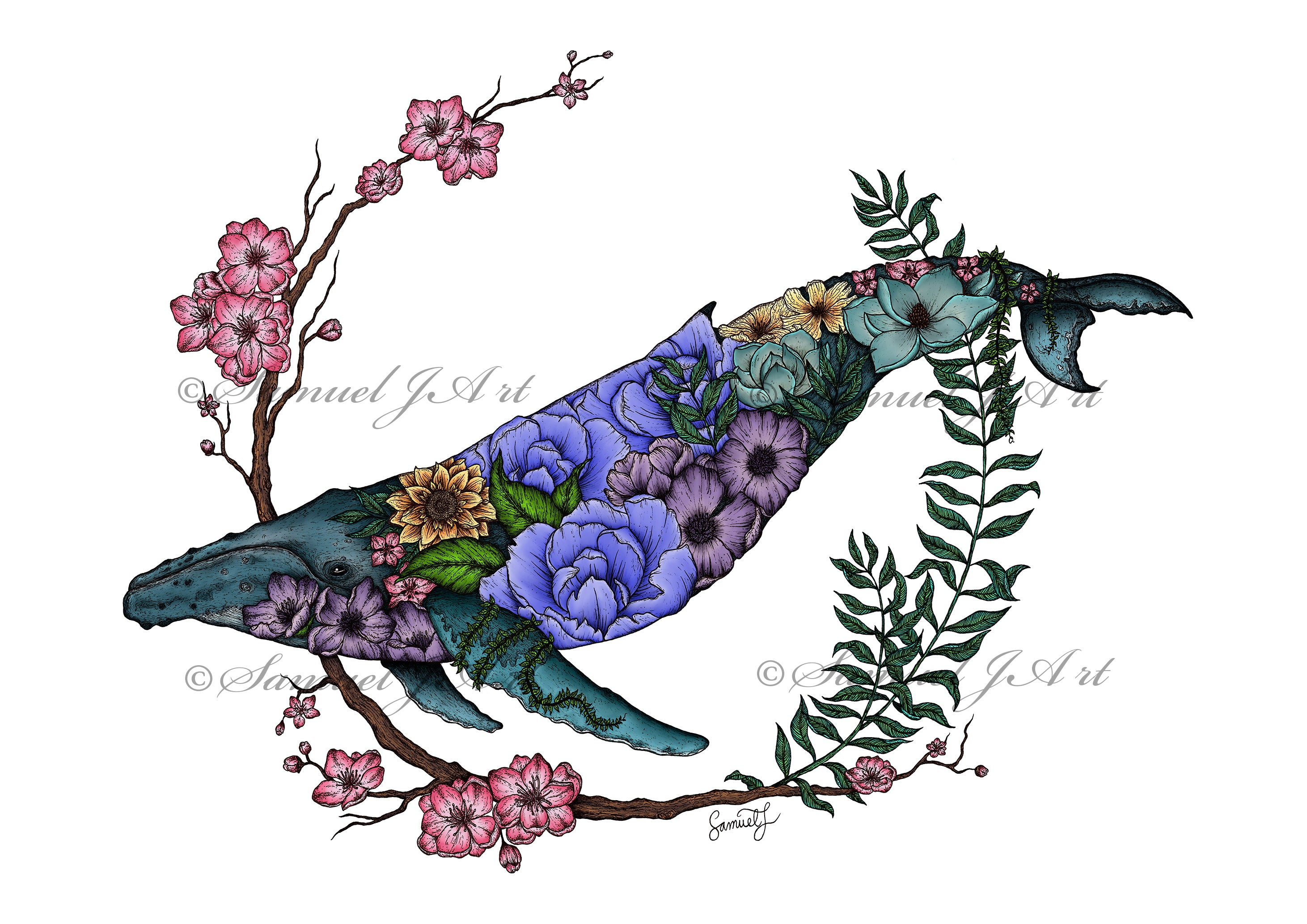 Floral Whale Colour - White Background