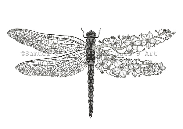 Blossom Dragonfly - Prints