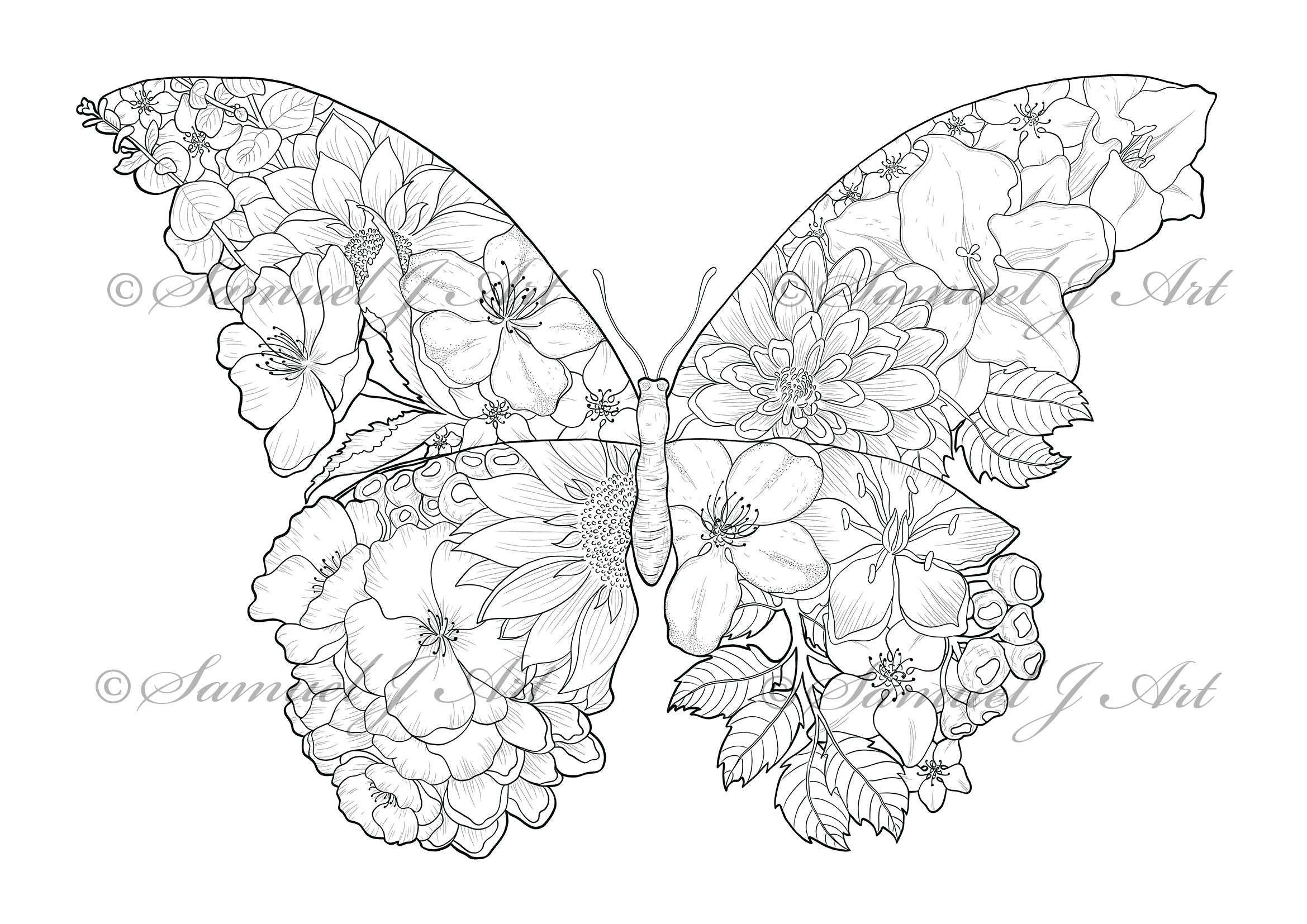 Floral Butterfly - Colouring Template - Digital Download