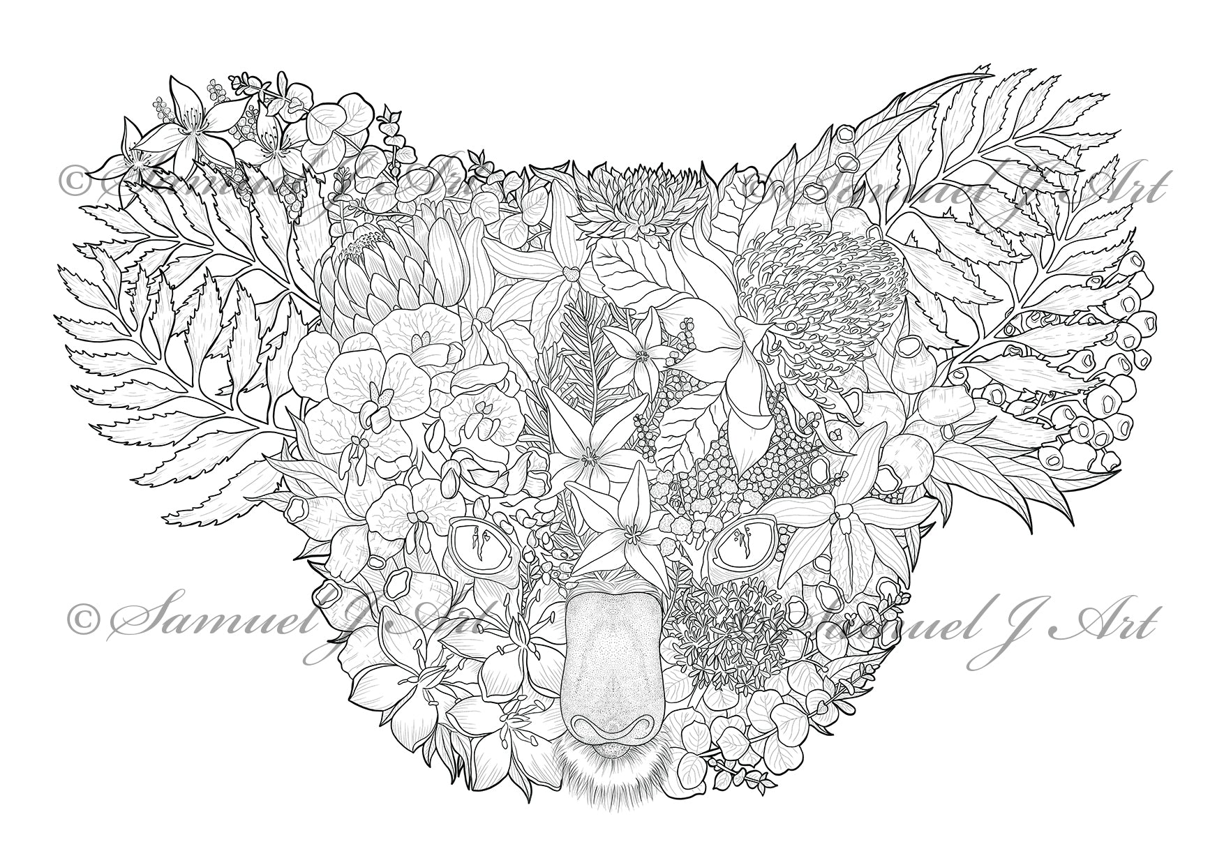 Floral Koala - Colouring Template - Digital Download