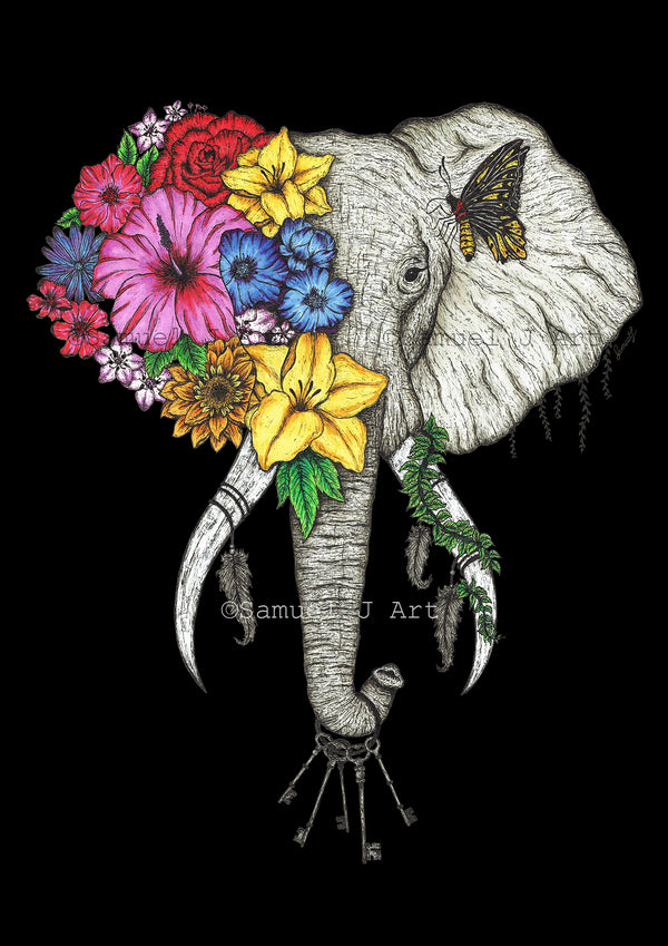 Floral Elephant in Colour - Black Background - Prints