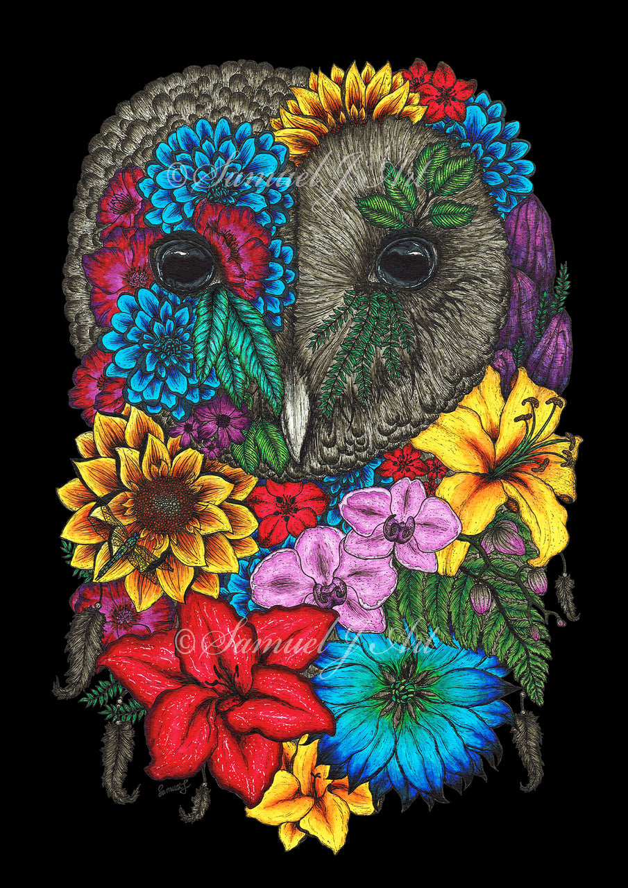 Floral Owl in Colour - Black Background - Prints