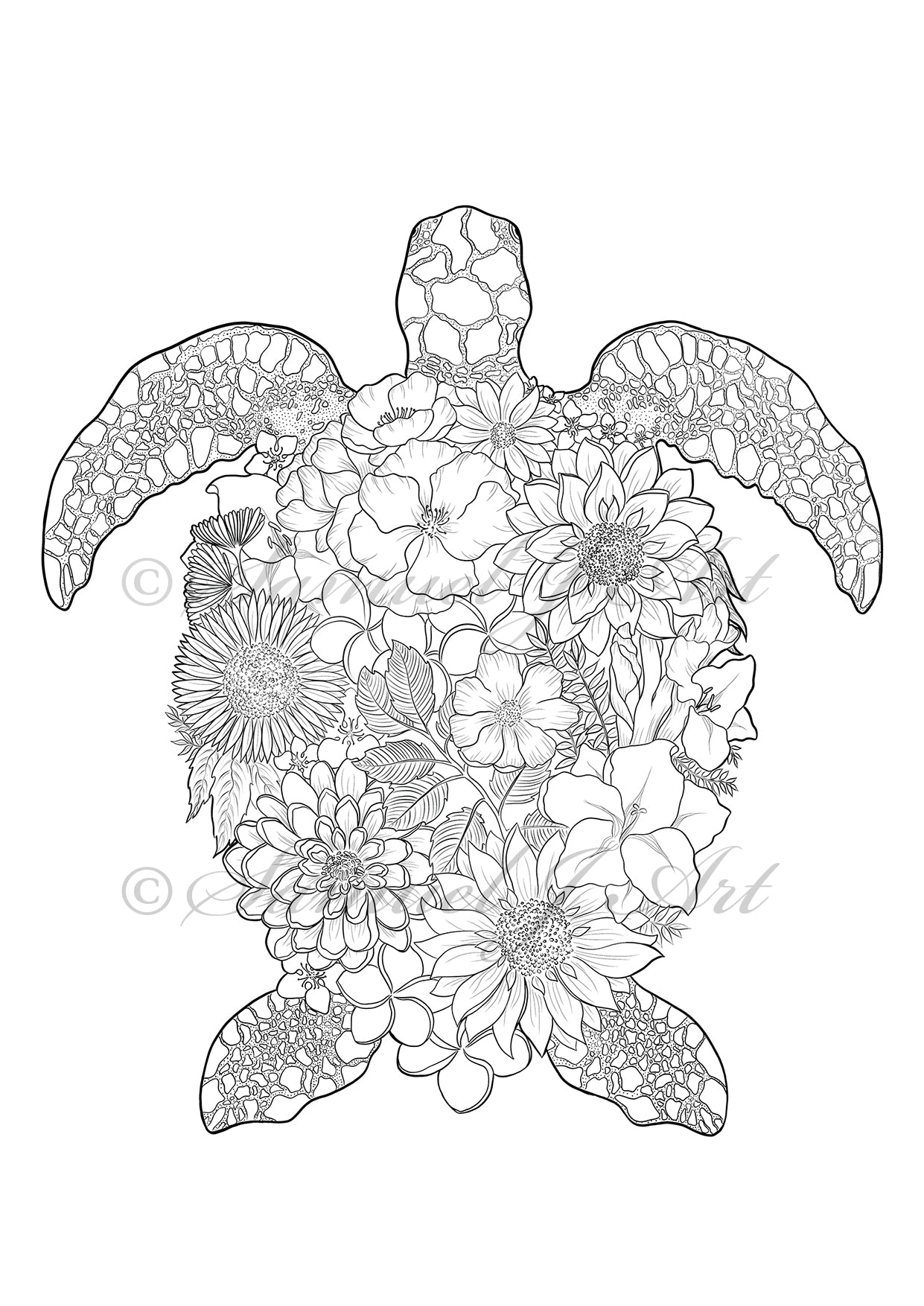 Floral Turtle - Colouring Template - Digital Download