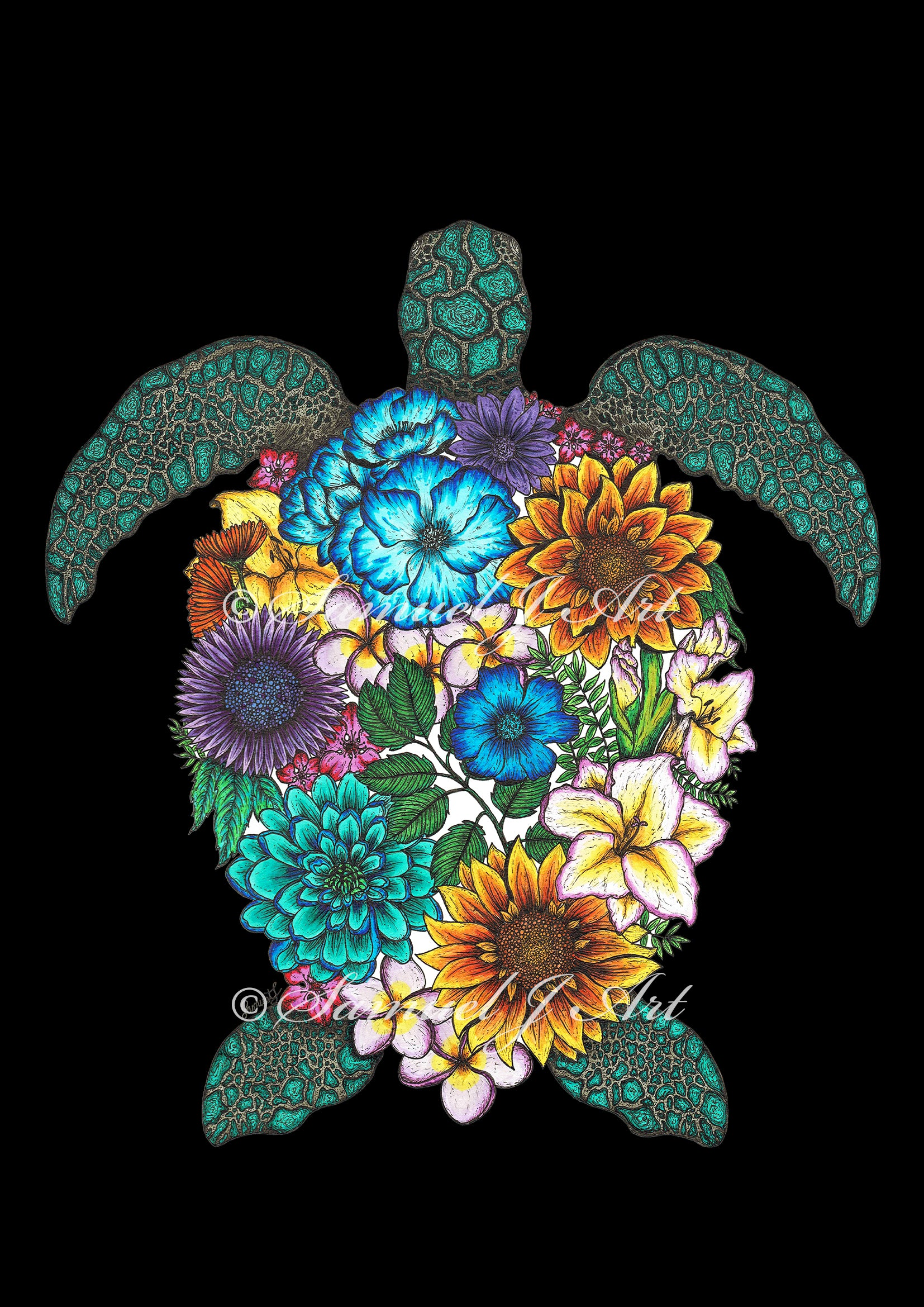 Floral Turtle - Colour - Black Background