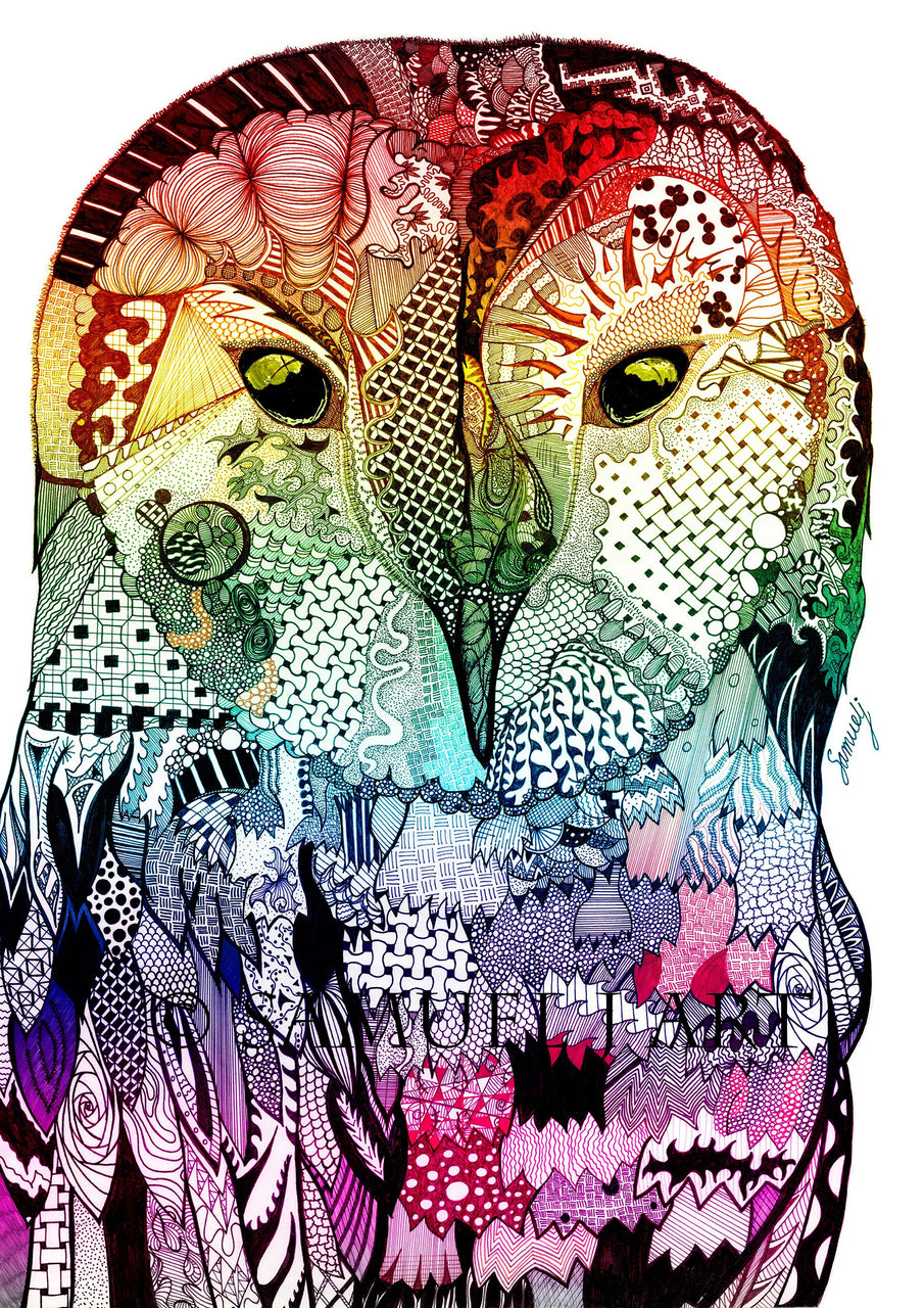 Multi-Coloured Wise Owl - Print