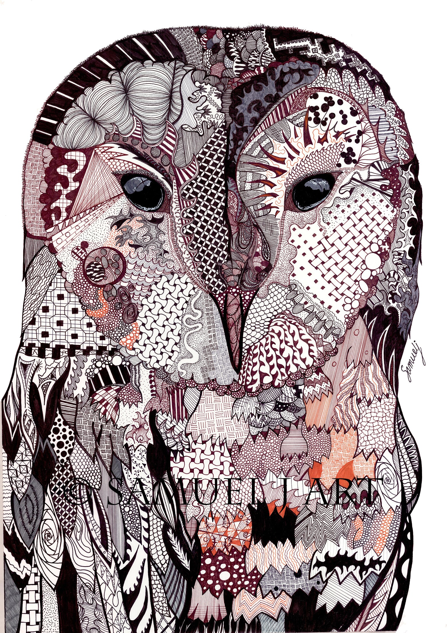Original Colour Wise Owl - Prints