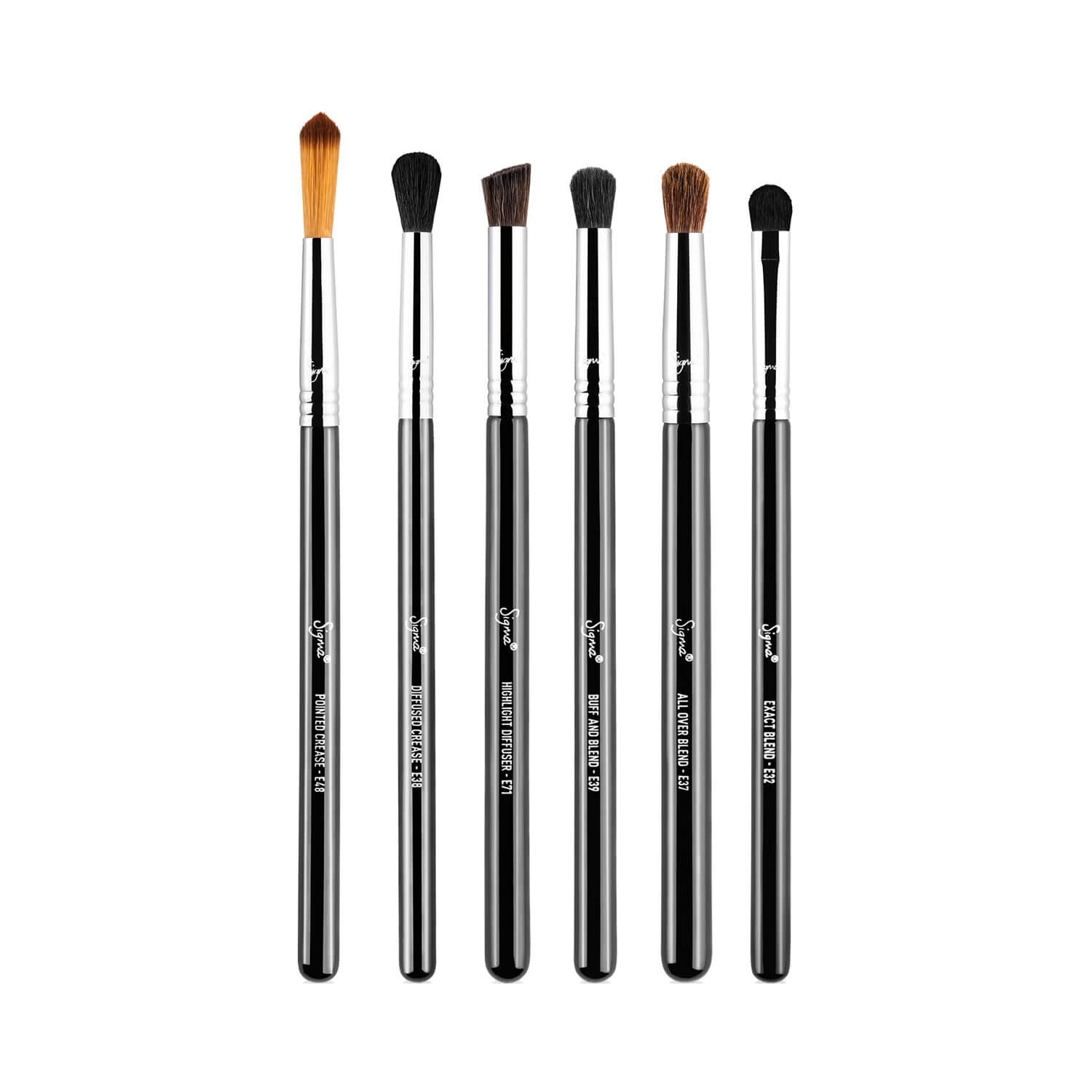 Sigma Beauty Perfect Blend Brush Kit