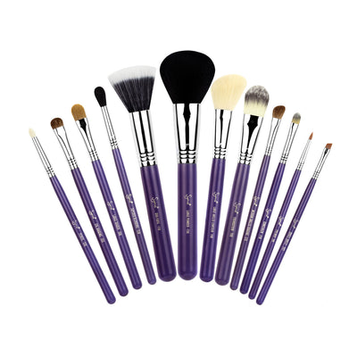 Sigma Beauty 12 Brush Kit Make Me Crazy In Purple