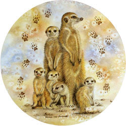 O29 Meercats Fridge Magnet