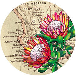 O11 Protea On Map Fridge Magnet