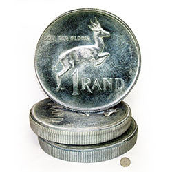 G13 One Rand Coin Cushion