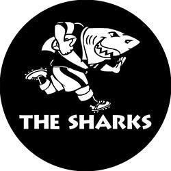 Q02 Sharks Fridge Magnet