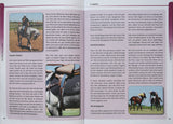 A QUECHUA POLO BOOK VOLUME 2 - THE POLO CONNECTION