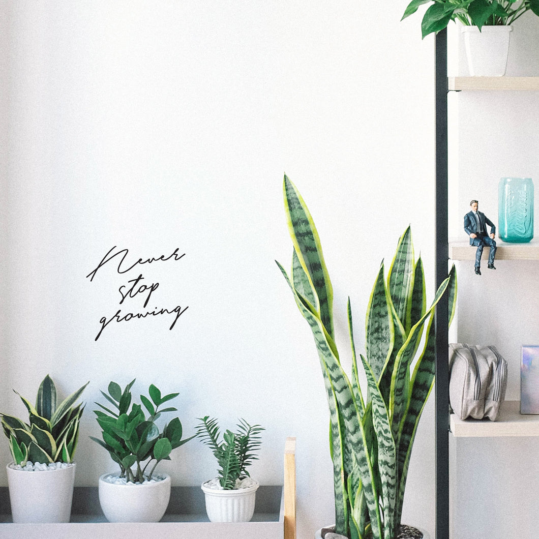 Never Stop Growing - mini wall quote