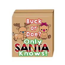 Load image into Gallery viewer, Buck or doe gender reveal box santa gender reveal party