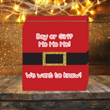 Ho Ho Ho Santa Knows Gender Reveal Box
