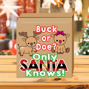 Buck or Doe Santa Gender Reveal Box
