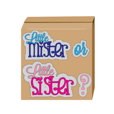 Little Sister or Little Mister Gender reveal box