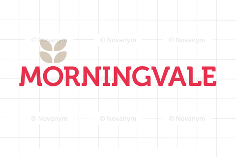 morningvale.com