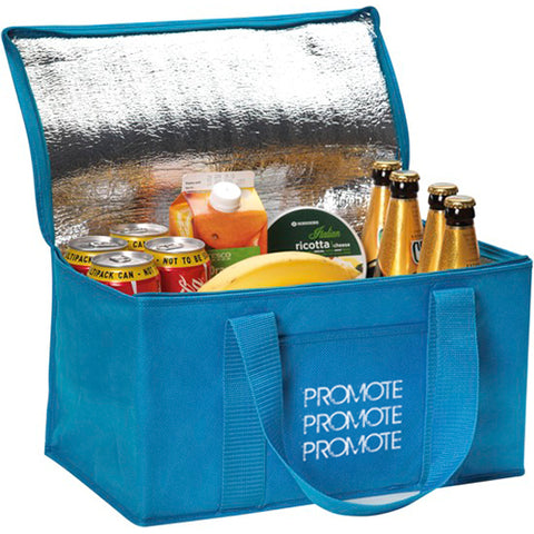 Large Fold Away Cooler Bags