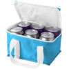 Mini Cooler Bag  - Image 4