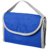 Carry Cooler Bags  - Image 4