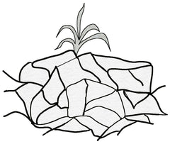 Cracked Earth Desert with sprout yucca plant black and white clipart by Wendy Christine at Raspberry Lane Crafts Copyright 2018